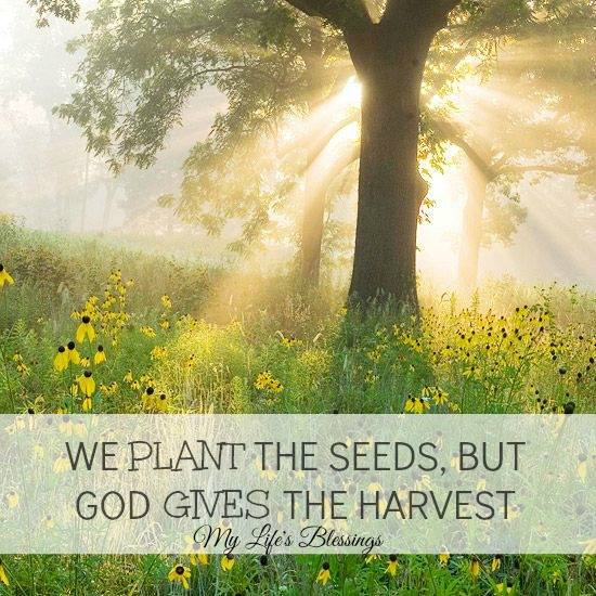 Inspirational Quotes About Positive: Christian Quotes About Harvest. QuotesGram