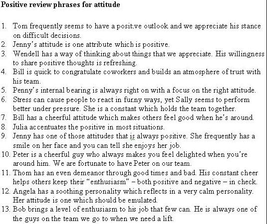 Writing A Self Evaluation For Performance Review Examples