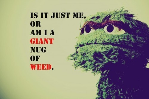 Oscar From Sesame Street Images Quotes. QuotesGram