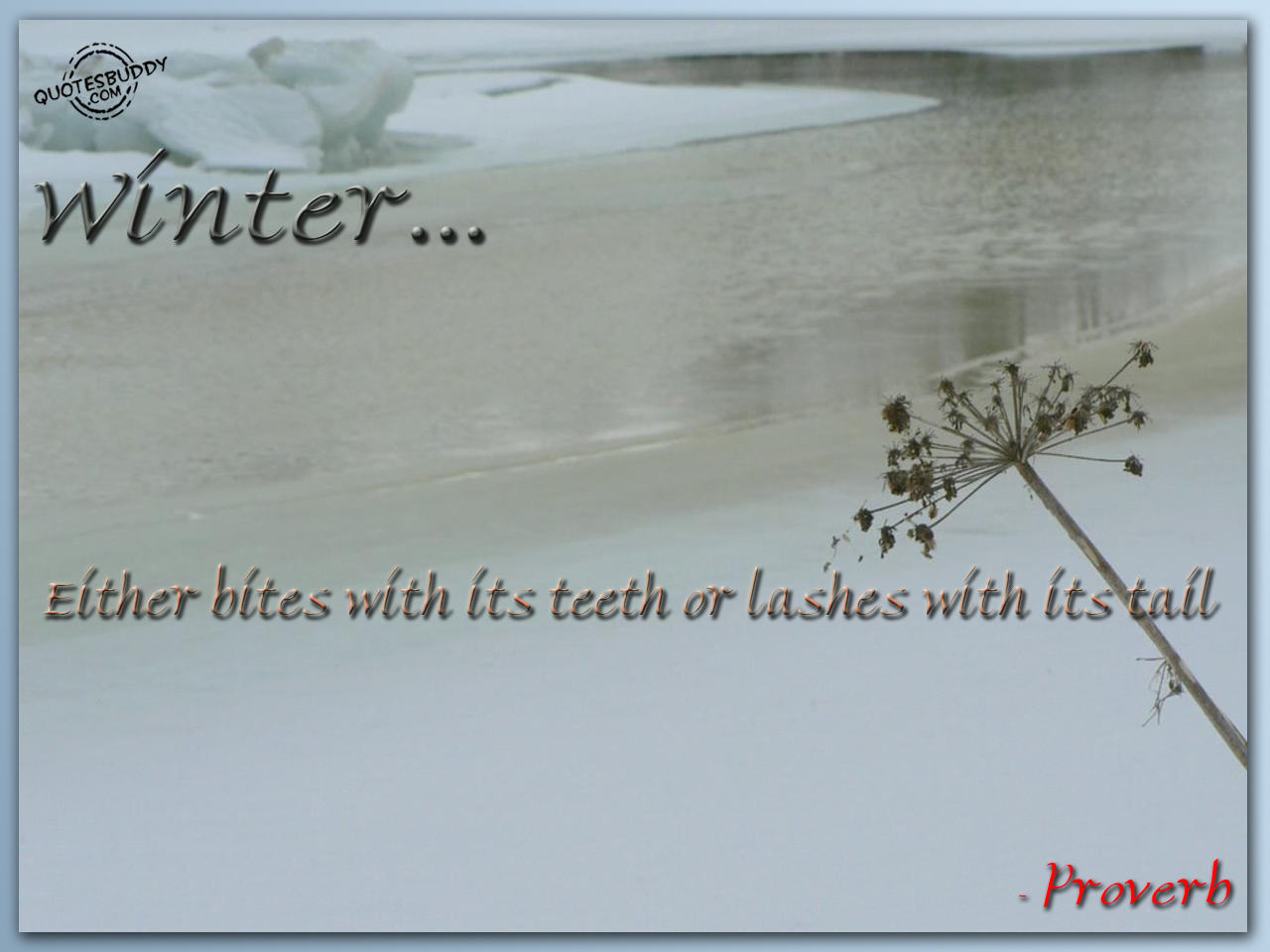 Bad Weather Quotes Funny: Winter Weather Funny Quotes. QuotesGram