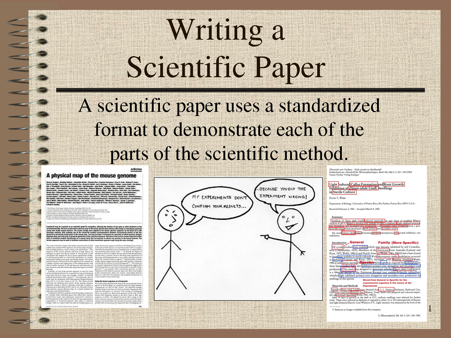 Help in writing scientific papers
