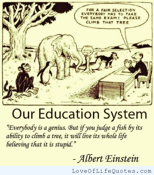 Education Is Liberation Quote: Albert Einstein Quotes About School. QuotesGram