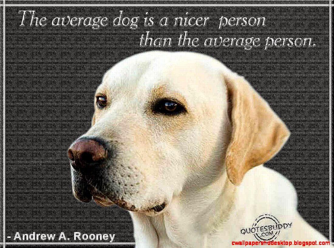 Inspirational Dog Training Quotes