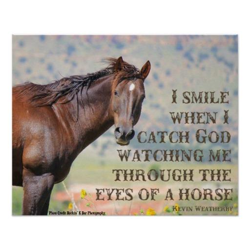 Gift Horse Quotes. QuotesGram