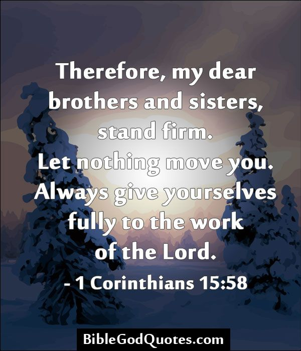 Brother And Sister Support Quotes: Sister Bible Quotes. QuotesGram