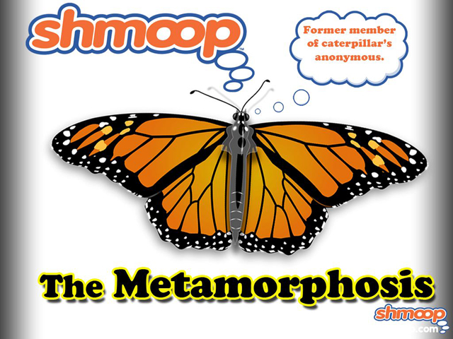 The Metamorphosis Essay Outline by Fabricio Abril on
