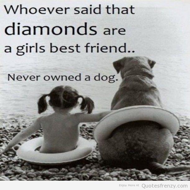 Cute Dog Quotes And Sa...