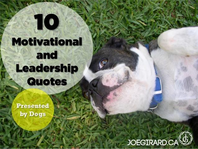 inspirational dog quotes quotesgram