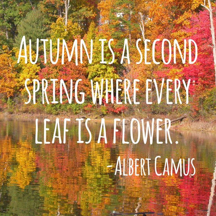 Autumn Phrases: Autumn Quotes Nature. QuotesGram