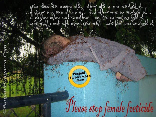 female feoticide Female feticide is a widespread social evil the preference for a boy child has chilled hearts the world over a detailed look into the causes, effects, and solutions.
