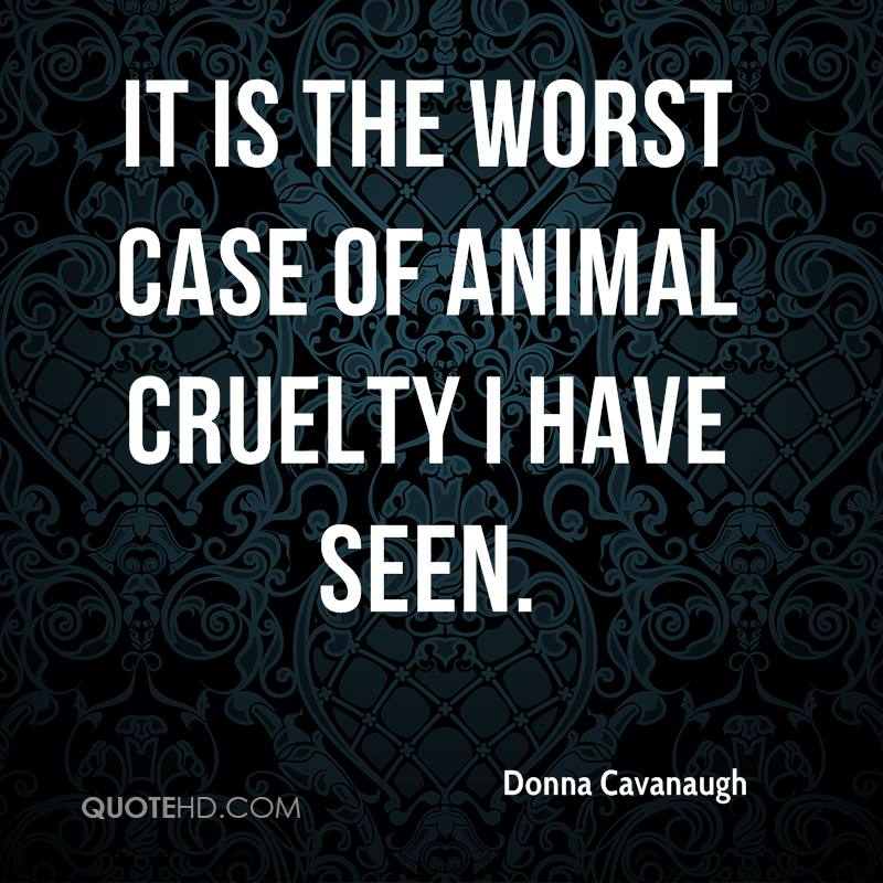Animal Abuse Quotes By Famous People: Quotes About Animal Abuse. QuotesGram