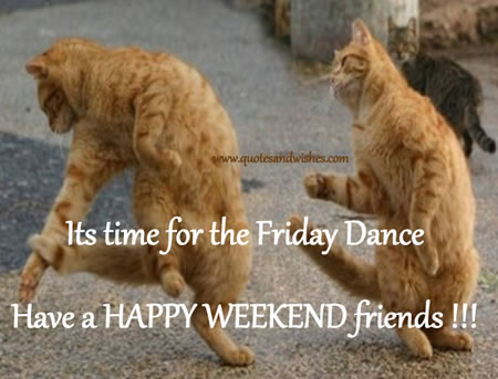 Happy Friday Dance Quotes Funny Animals. QuotesGram