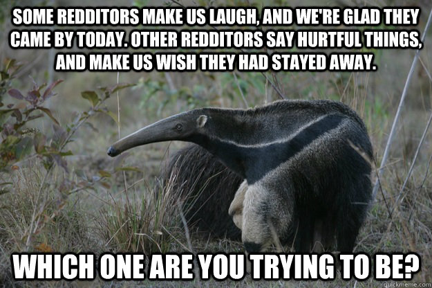Anteater Funny Quotes....