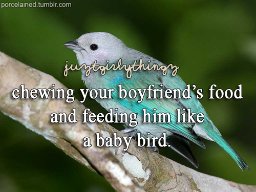 Quotes About Love And Birds Quotesgram: Quotes About Feeding The Birds. QuotesGram