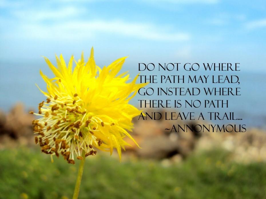 Beautiful Summer Quotes Quotesgram