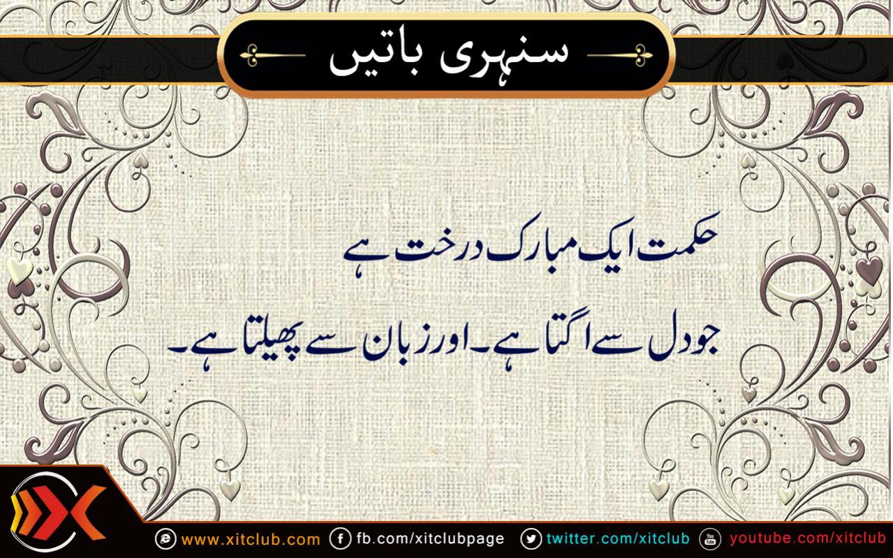 urdu sayings and quotes quotesgram
