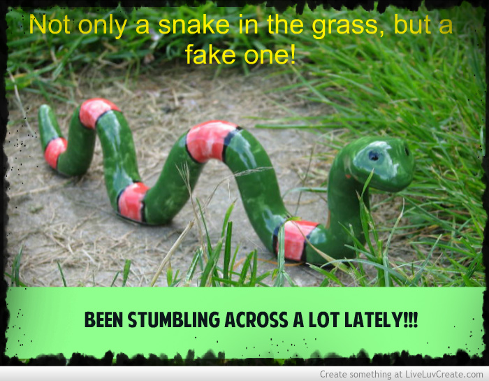 Snake In The Grass Quotes Quotesgram