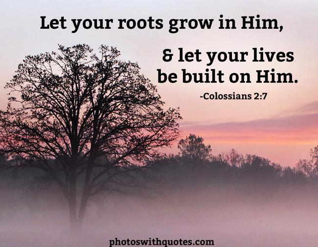 Growing In Faith Quotes. QuotesGram