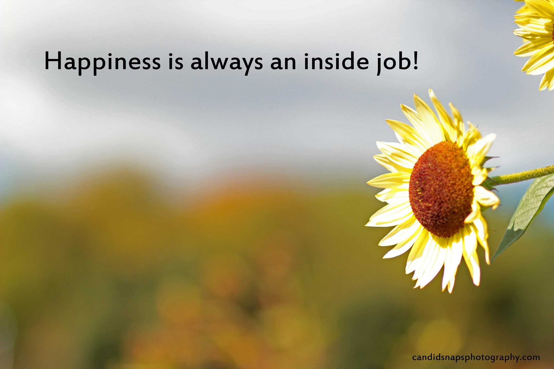 Quotes About Inner Happiness. QuotesGram