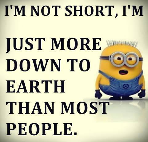 Minion Quotes About Homework. QuotesGram