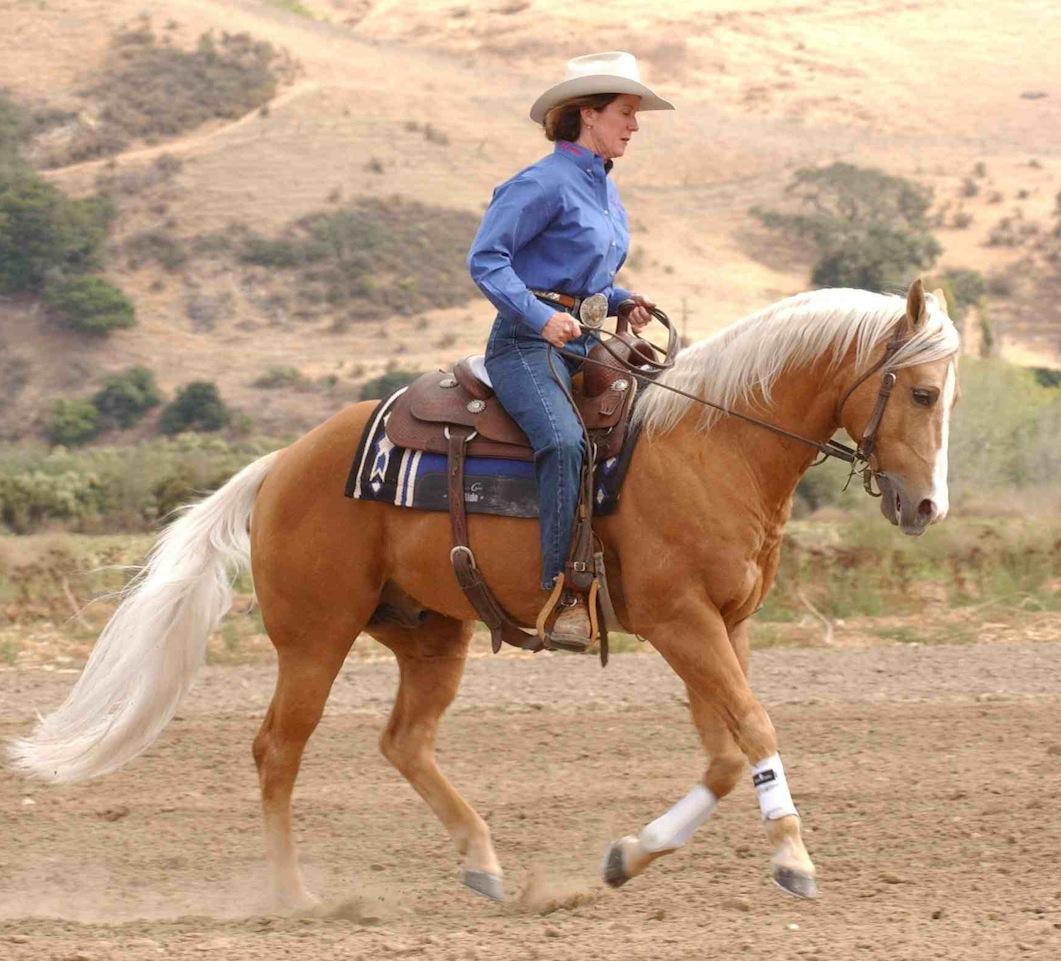 Western Riding Quotes Quotesgram