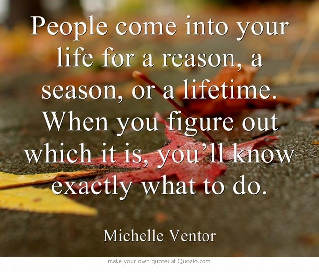 People In Your Life For A Reason Quotes. QuotesGram