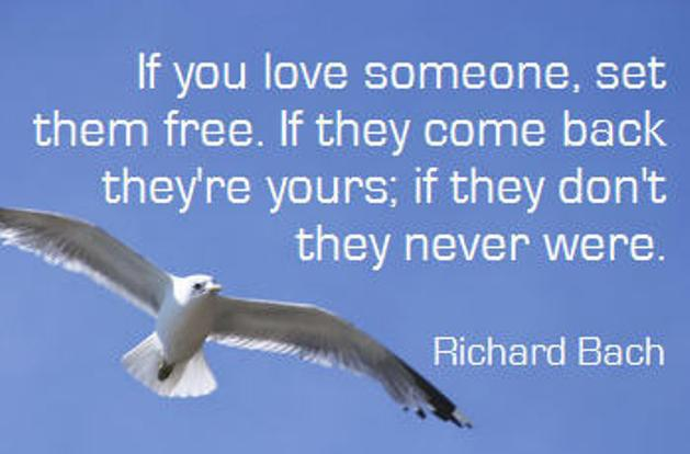 If You Love Someone Set Them Free If They Come Back They: Love Jonathan Livingston Seagull Quotes. QuotesGram