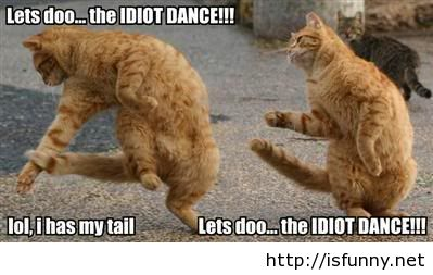Funny Quotes About Idiots. QuotesGram