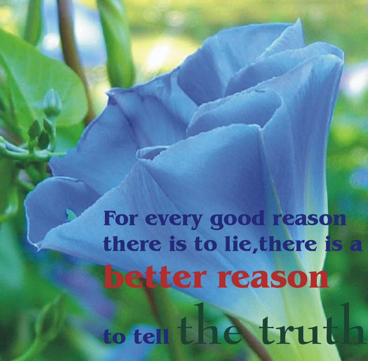 Trust Sms Quotes: Of All Time Best Life Quotes. QuotesGram