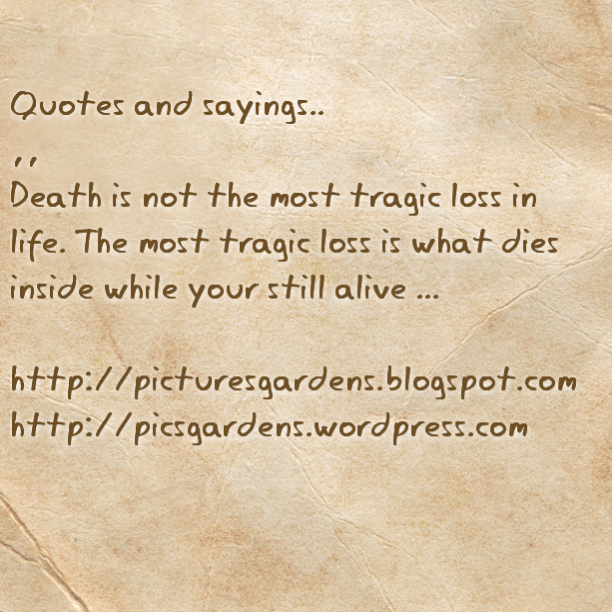 The Death Cure Quotes Quotesgram: Quotes About Tragic Death. QuotesGram