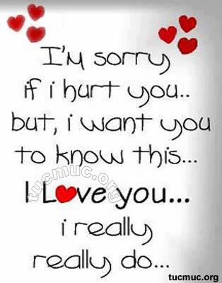 im sorry but i love you quotes - photo #9