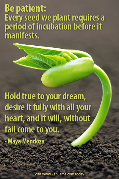 inspirational quotes about seeds quotesgram