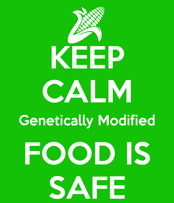 genetically modified foods is it good Buy products related to genetically modified food products and see what good read 46 out of 5 i knew that genetically modified foods are foods produced from.