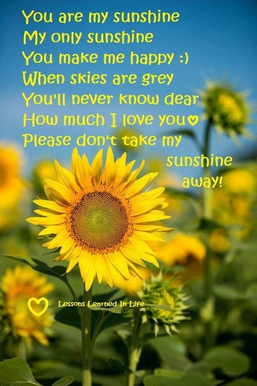 Sunflower Sayings And Quotes Quotesgram