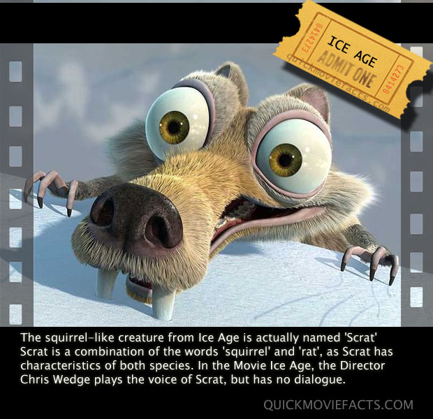 Funny Age Quotes: Ice Age Funny Quotes. QuotesGram
