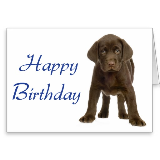 Happy Birthday Quotes From Dogs. QuotesGram