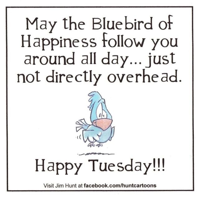 Do I Look Like the Bluebird of Happiness  ya just gotta