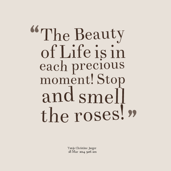 Smell Good Quotes: Smell The Roses Quotes. QuotesGram