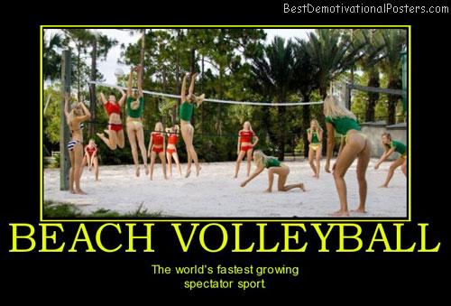 Spectators Quotes Quotesgram: Volleyball Motivational Quotes. QuotesGram
