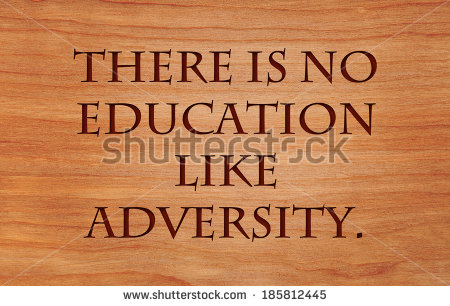 Applied Educational Neuroscience/ Brain and Adversity Survey for Classrooms, Schools, and Districts