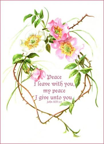 Christian Quotes About Spring Quotesgram