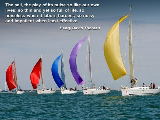 Sailing Quotes Hemingway Quotesgram: Henry David Thoreau Education Quotes. QuotesGram