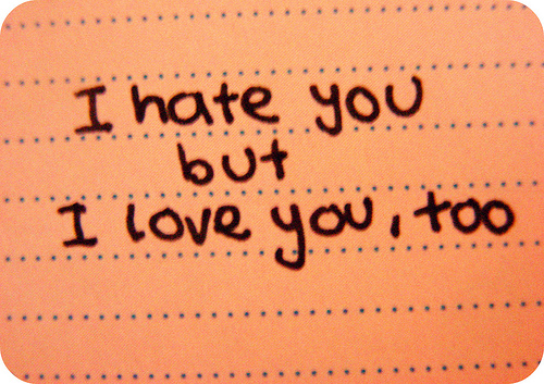 I Hate You But I Love You Quotes. QuotesGram  I Hate You But ...