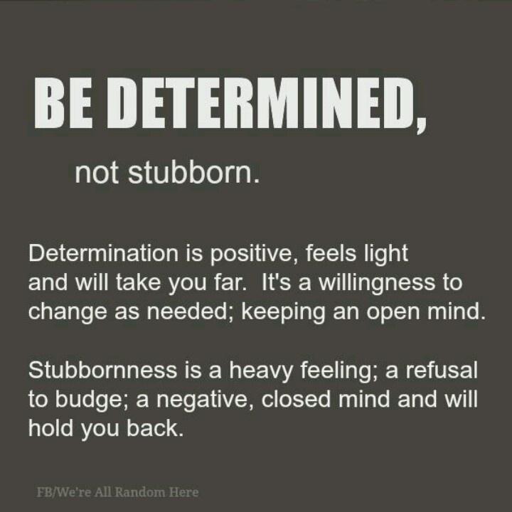 Funny Quotes About Being Stubborn: Im Stubborn Quotes. QuotesGram