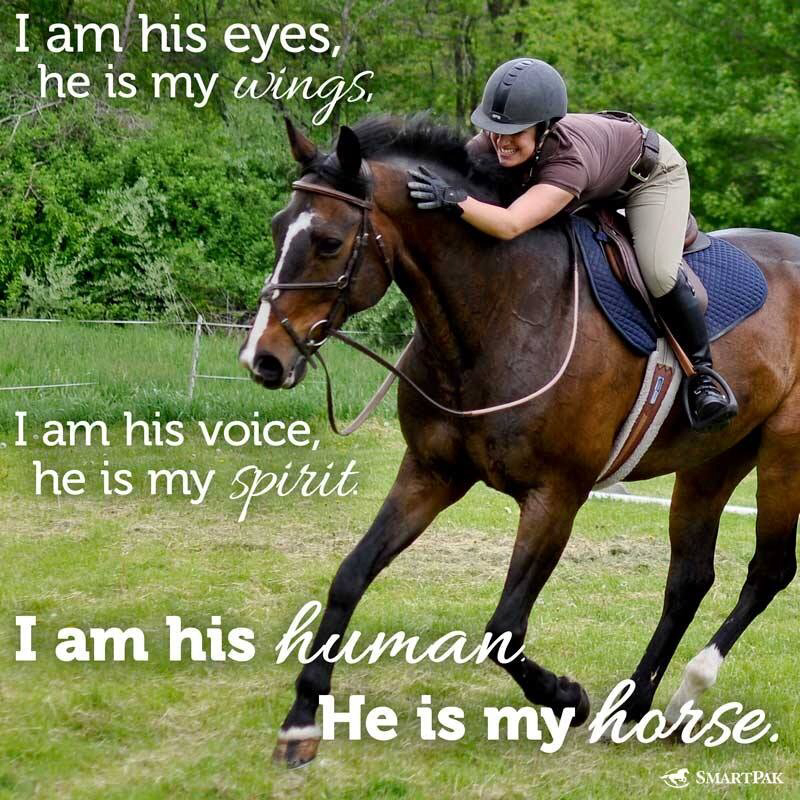 Horse Jumping Quotes And Sayings. QuotesGram