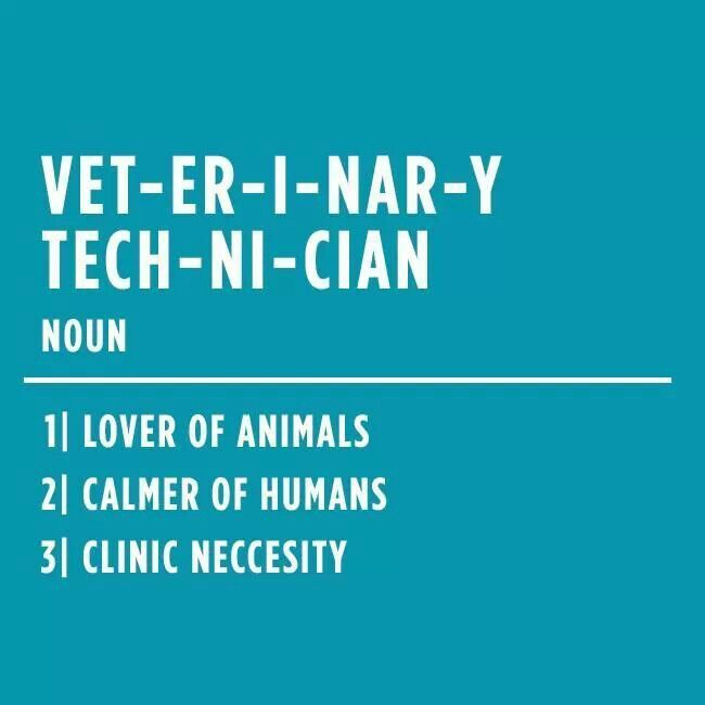 Quotes About Veterinary Technicians Quotesgram