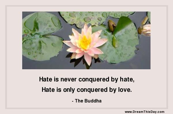 Buddha Quotes Hate. QuotesGram