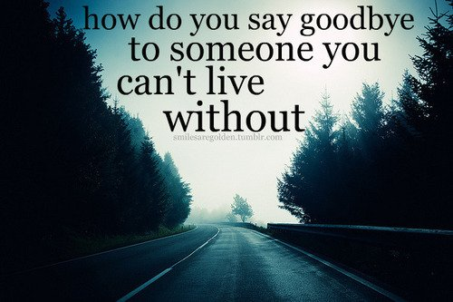 Saying Goodbye To Someone You Love Quotes. QuotesGram