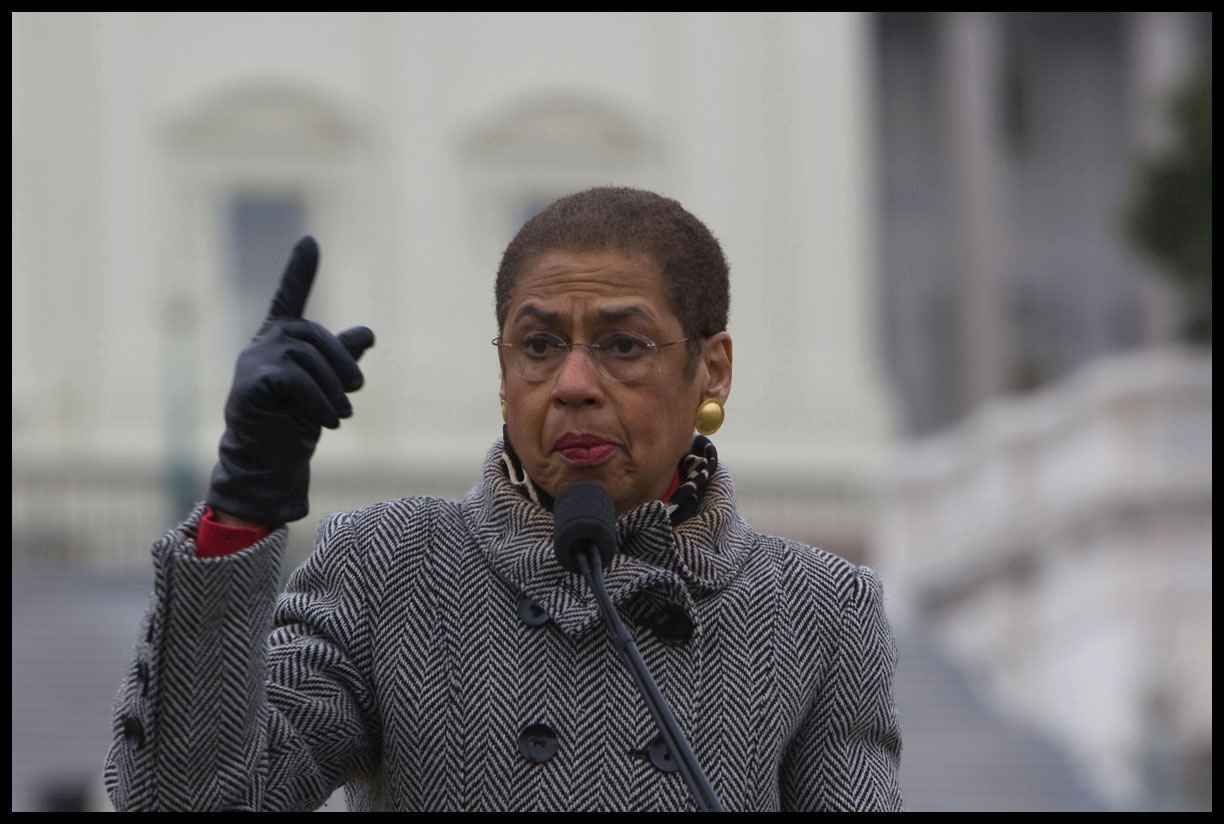 the life and career of eleanor holmes norton Eleanor holmes norton, née eleanor holmes, (born june 13, 1937, washington, dc, us), american lawyer and politician who broke several gender and racial barriers during her career, in which she defended the rights of others for equal opportunity .