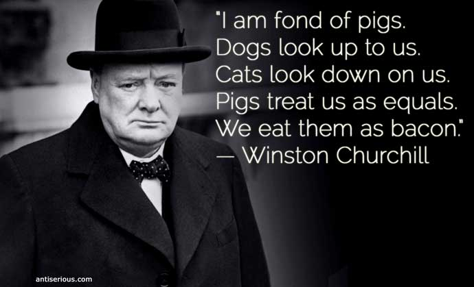 A character sketch of winston churchill essay